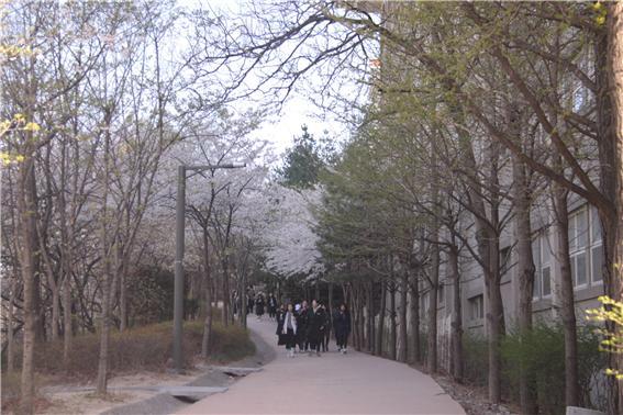 산책로 1.jpg